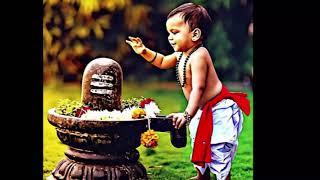 shiva status