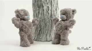whatsapp teddy bear video