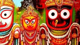 happy jagannath status video