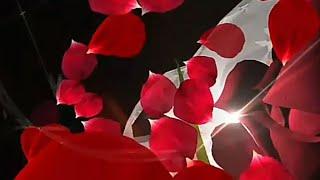 valentine status video