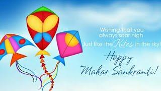makar sankrati celebration